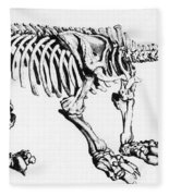 Megatherium, Extinct Ground Sloth Fleece Blanket