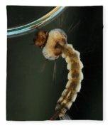 Mosquito Larva Fleece Blanket