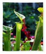 Sarracenia Flava Fleece Blanket