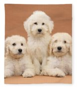 Puppies Fleece Blanket