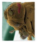 Sem Of A Mutant Fruit Fly Fleece Blanket