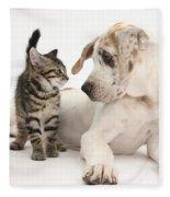 Tabby Kitten & Great Dane Pup Fleece Blanket