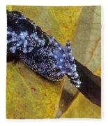 Vietnamese Moss Frog Fleece Blanket