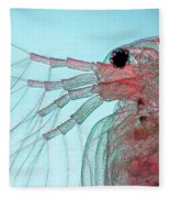 Water Flea Daphnia Magna Fleece Blanket