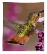 Allens Hummingbird Fleece Blanket