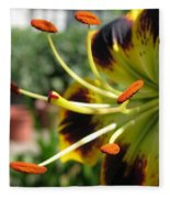 Asiatic Lily Named Black-eyed Cindy Fleece Blanket