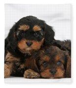 Cavapoo Pups Fleece Blanket