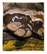 Crowned Tree Frog Fleece Blanket