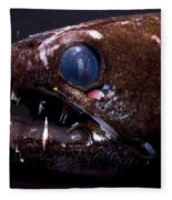Dragonfish Fleece Blanket