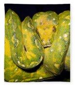 Green Tree Python Fleece Blanket