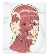 Illustration Of Facial Muscles Fleece Blanket