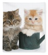 Maine Coon Kittens Fleece Blanket