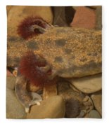 Mudpuppy Fleece Blanket