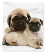 Pug And English Mastiff Puppies Fleece Blanket