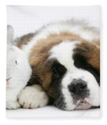 Saint Bernard Puppy With Rabbit Fleece Blanket