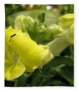 Snapdragon From The Mme Butterfly Mix Fleece Blanket