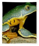 Splendid Leaf Frog Fleece Blanket