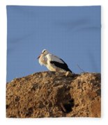 Storks In Marrakech Fleece Blanket