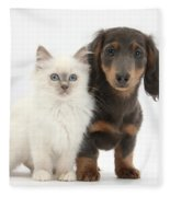Blue-point Kitten & Dachshund Fleece Blanket