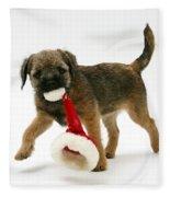 Border Terrier Puppy Fleece Blanket