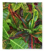 5- Croton Fleece Blanket