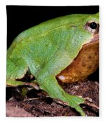 Darwins Frog Fleece Blanket