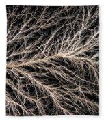 Electrical Discharge Lichtenberg Figure Fleece Blanket