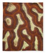 Fluorescent Coral In White Light Fleece Blanket