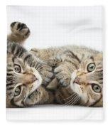 Kitten Companions Fleece Blanket