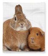 Rabbit And Guinea Pig Fleece Blanket