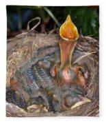 Robin Nestlings Fleece Blanket