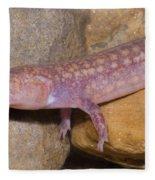 West Virginia Spring Salamander Fleece Blanket