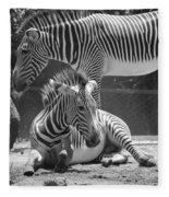 Zebras In Black And White Fleece Blanket