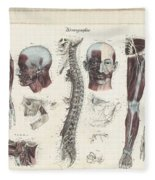 Anatomie Methodique Illustrations Fleece Blanket