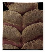Gecko Foot Pads Fleece Blanket
