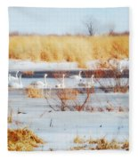 7 Swans Swimming  Fleece Blanket