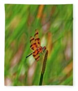 8- Dragonfly Fleece Blanket