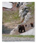 Black Bear Family Fleece Blanket