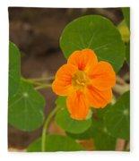 A Beautiful Orange Trumpet Shaped Flower With Green Leaves Fleece Blanket