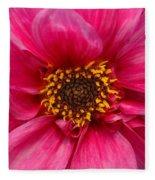 A Big Pink Flower Fleece Blanket