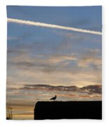A Bird Outlined Against The Setting Sky At Dover Castle Fleece Blanket