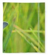 A Blue And Grass Fleece Blanket