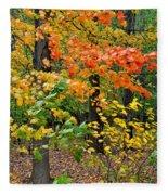 A Blustery Autumn Day Fleece Blanket