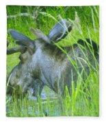 A Bull Moose Wading His Pond Fleece Blanket