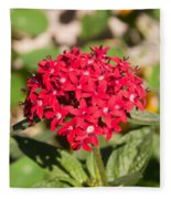 A Bunch Of Small Red Flowers Fleece Blanket