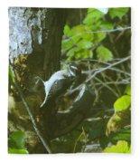 A Busy Woodpecker  Fleece Blanket