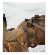 A Camel Foraging For Food In A Desert Environment Fleece Blanket