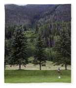 A Day At The Park In Vail Fleece Blanket