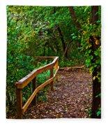 A Fall Walk Fleece Blanket