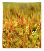A Forest Of Moss II Fleece Blanket